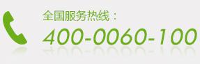 4000060100